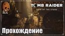 Shadow of the Tomb Raider Прохождение 35➤ Гробница Древний акведук и склеп