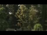 Пожар в Сочи- погибли 8 человек