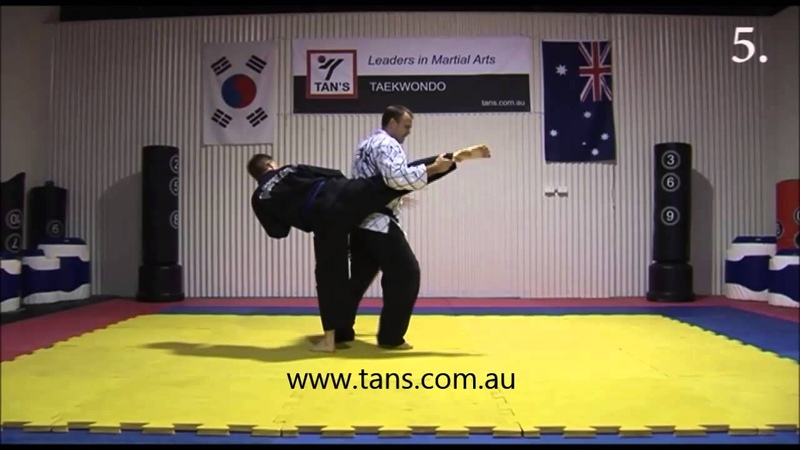 Tans Hapkido - S27 Defence against roundhouse kick