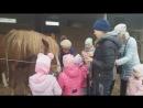 Кормление лошадки на конюшне Гуляй поле .Мамина радость