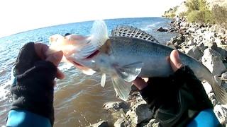 Рыбалка на ВВ
