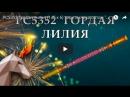 РС5352 Гордая лилия 1 0 х 6 пиротехника оптом ОГОНЁК