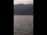 Абхазия 2 купание в открытом море