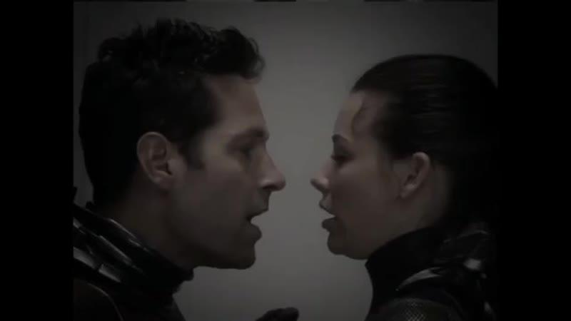 Marvel Vine | Ant-man | Scott Lang | Wasp | Hope van Dyne | Scope | Nicole Evangeline Lilly | Paul Rudd