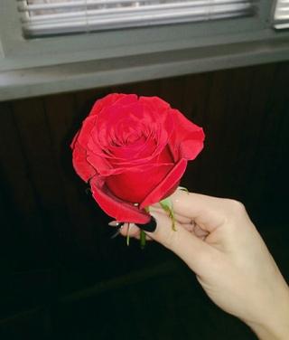 Девушки с большим букетом роз — 11