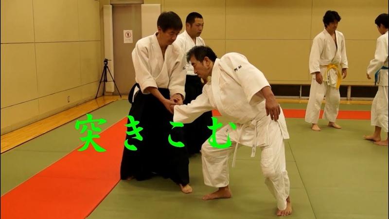 東京稽古会175 突きこむ 大東流合気柔術