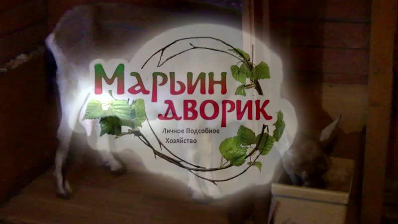 19.01.09. Ряженка (суточный удой)