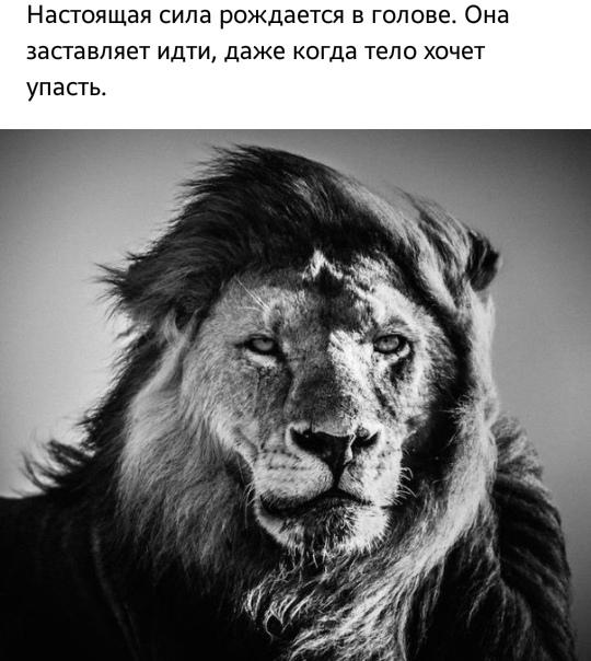 Фото №456274566 со страницы Маріанны Василівны