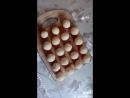 Сырные шарики. обожаю!!
