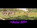 ×Maloi OFF×