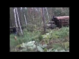 Зил 131 витаскивает Урал 4320 с прицепом в лесу 360 X 640 mp4