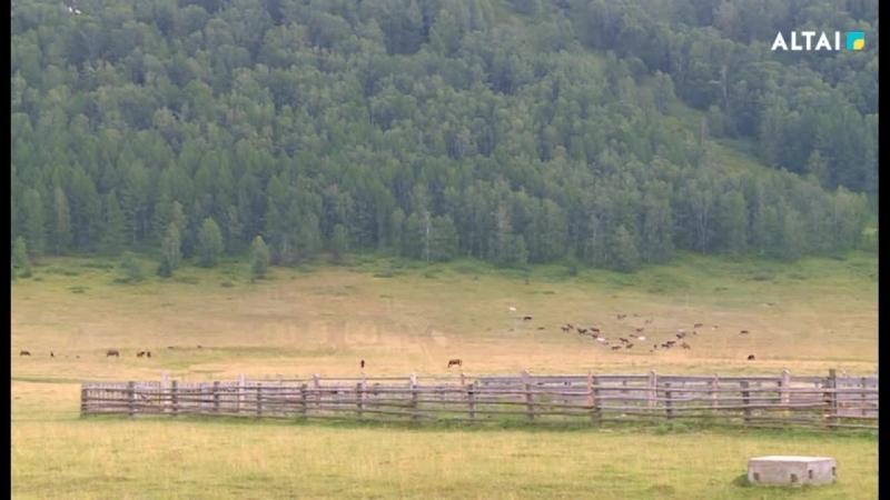 Сакральный Алтай. В поисках Беловодья