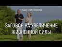 Видеосеанс Заговор на увеличение жизненной силы Марта Николаева Гарина