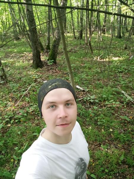 Зашёл в лес, а там куча валежника. Весь лес гнилой.