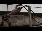 Тренировки сверхчеловека - Жером Пина (VENUM)