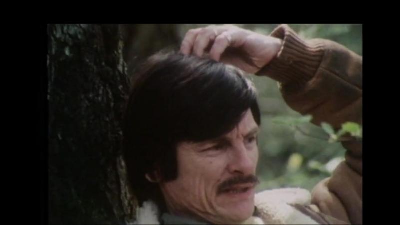 «Поэт кино: Андрей Тарковский» (1984) - документальный. Донателла Баильво
