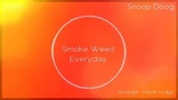 Snoop Dogg - Smoke Weed Everyday (Remix)(Audio spectrum)