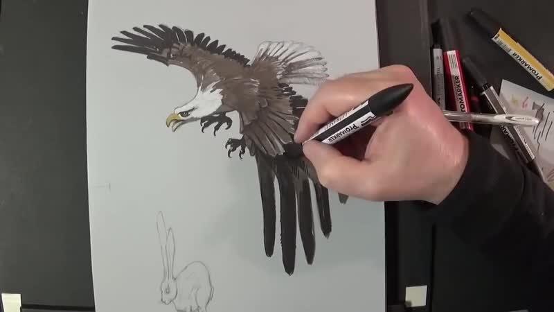 6. Hunting Eagle - Drawing 3D Eagle Illusion - Vamos