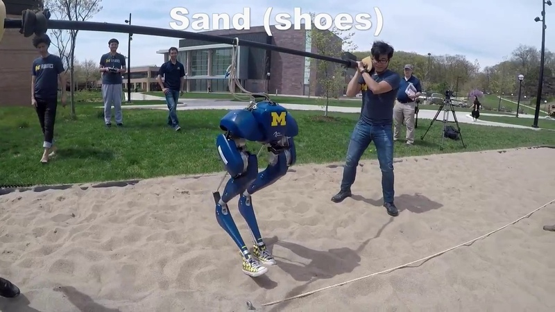 Feedback Control of a Cassie Bipedal Robot: Walking, Standing, and Riding a Segway