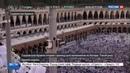 Новости на Россия 24 • Паломников из Катара доставят на хадж за счет Саудовской Аравии