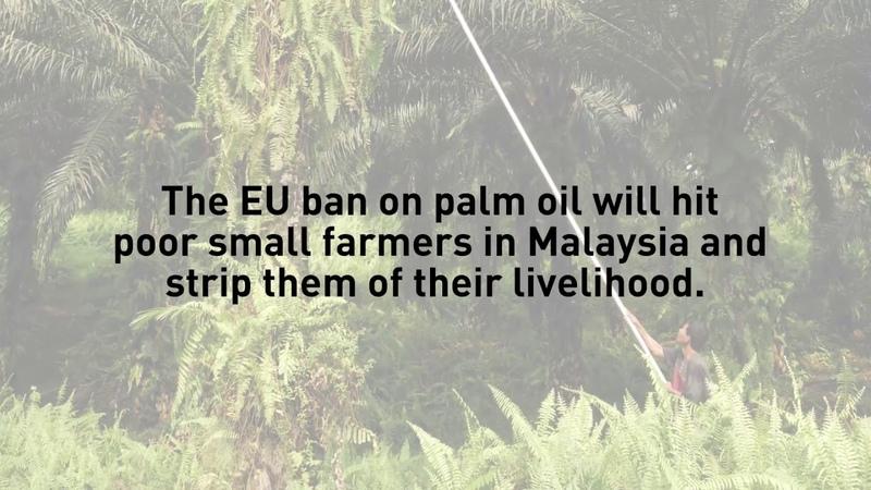 EU Trade Impacts of Banning Palm Oil Biofuels