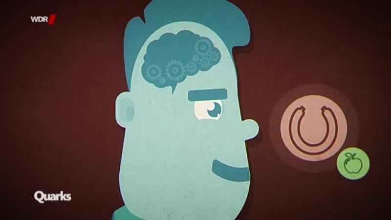 Quarks Co schlechte Gewohnheiten wie wir sie endlich loswerden 20 02 18