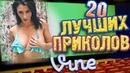 Лучшие Приколы Vine! (ВЫПУСК 15) [17 ]