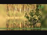 Мужской хор Валаамского монастыря — Тропарь святому праведному Иоанну Крестителю (МузСоюз) Песнопения для души