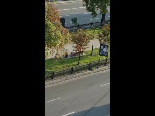 Девушка срёт в центре Киева. Киев днем, что творится в центре Киева 14.07.2018.
