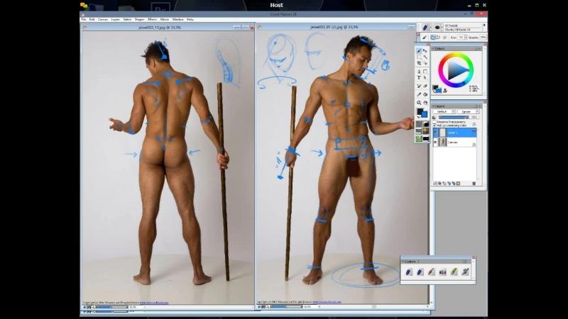6. Пропорции тела 1
