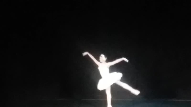 Лебедь Сен-Санса. Театр Алеко 11 ноября 2018