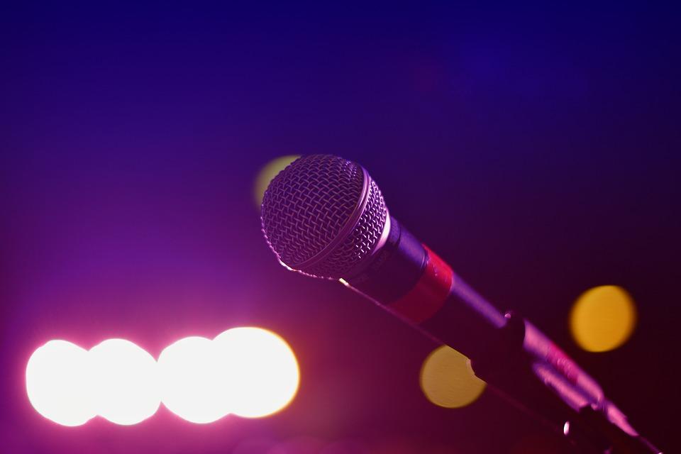 Артисты из Бибирева исполнили ретро-хиты в Бабушкинском парке