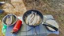 Рыбалка в верховьях реки Колва 2018. Часть 2. Немного рыбалки и много релакса.