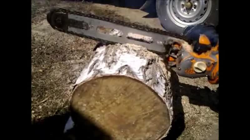 Бензопила Дружба грызёт дерево