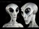 Раса инопланетян Серые