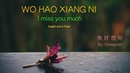 Wo Hao Xiang Ni lyric (I Miss You Much) - Pinyin English - Learn Chinese by songs
