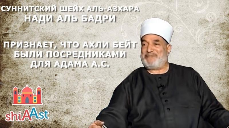 7 Суннитский Шейх Аль Азхара Нади аль Бадри Ахли бейт были посредниками для Адама а с