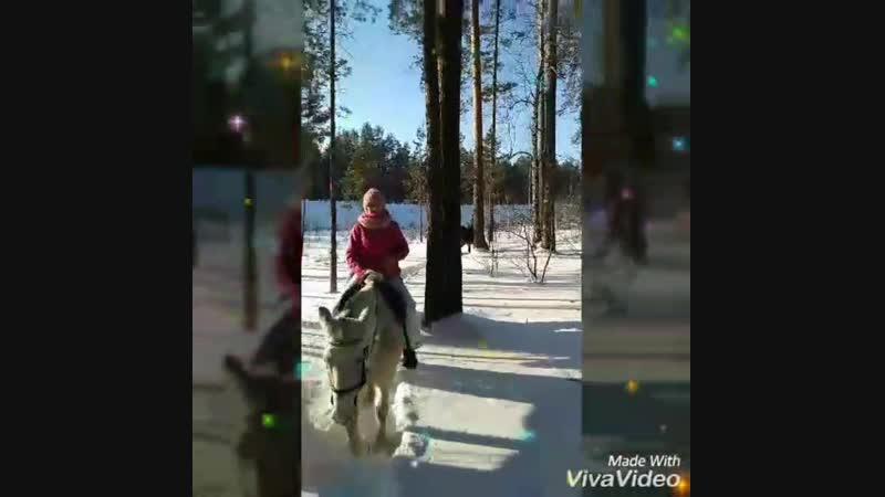 Конная прогулка по зимнему лесу с Сивкой Буркой