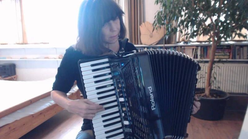 Talijanska Goran Bregovic accordion accordeon akordeon