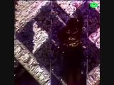 Дело ж лтых тюльпанов ROMB.mp4