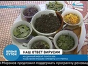 Янина Вайда в передаче Время суток рассказывает про Иван чай и лечение простуды