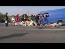 Смертельна ДТП в Коломиї загинули двоє дітей та жінка з чоловіком 7 ро травмовані оновлено