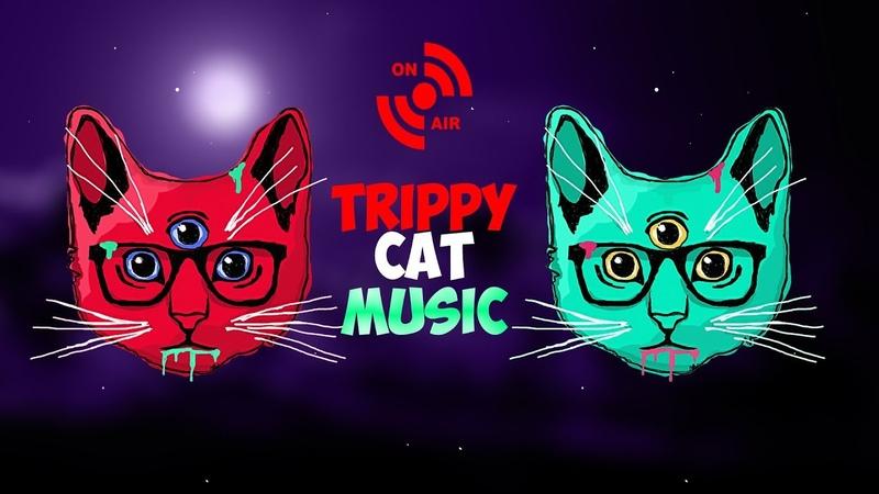 PSYCHEDELIC TECHNO RADIO 24/7 TRIPPY CAT MUSIC UNDERGROUND STREAM