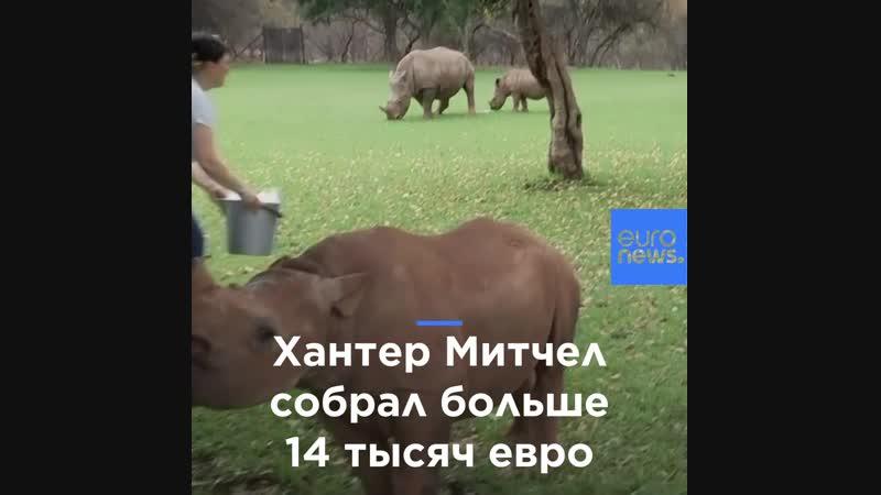 11-летний мальчик спасает носорогов