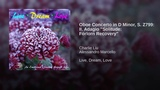 Oboe Concerto in D Minor, S. Z799 II. Adagio