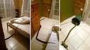 В Австралии женщина проснулась с питоном в кровати и не растерялась