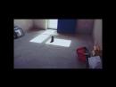 11! — копия (convert-video-