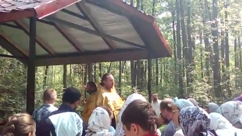 Праздничное водосвятие на святом источнике равноапостольных Константина и Елены у деревни Демидово.