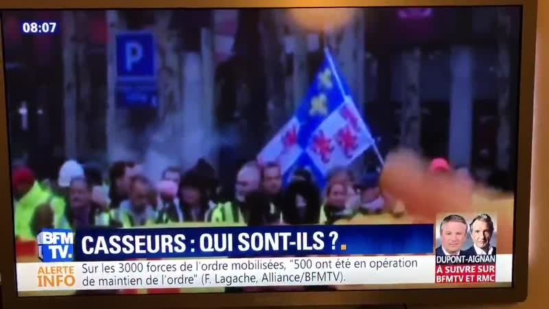 L'expert de BFM Sylvain Boulouque explique que les manifestants sont d'extrême-droite...