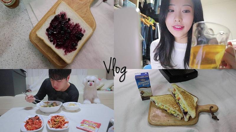 ENG SUB Vlog 레몬밤티 먹고 샌드위치 만들고 파스타 만드는 크리스마스 이브 일상
